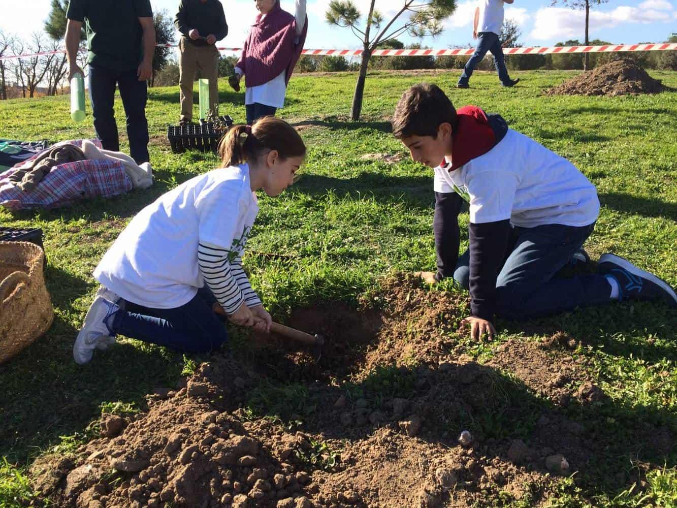 Kids planting a tree | Giraffa